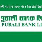 Pubali Bank online Application