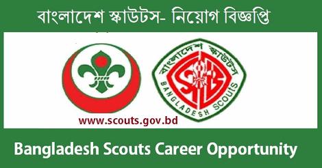 scouts job circular